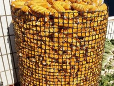 民用粮食储存土工格栅项目