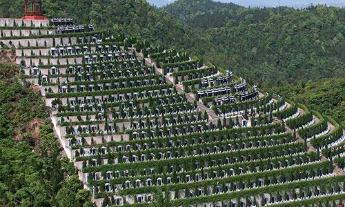 殡葬过程中需知事项?
