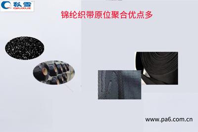 织带原位聚合锦纶优点多多