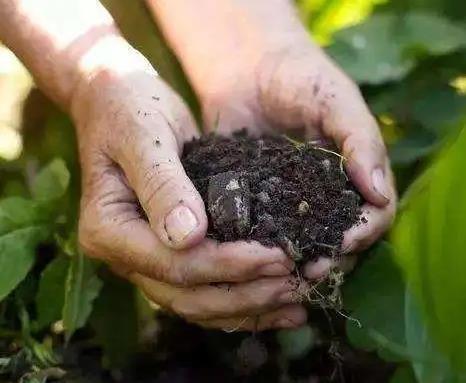 春耕时期,化肥安全检测迫在眉睫!