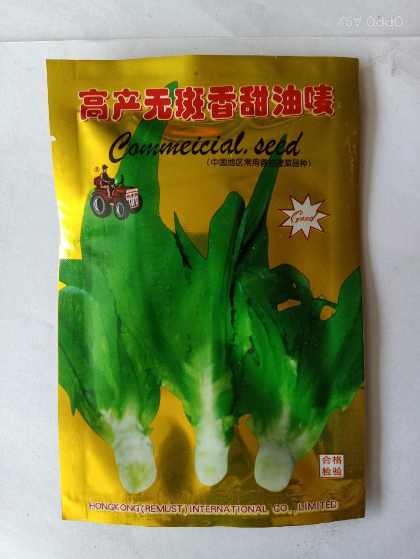高产无斑香甜油麦菜种子