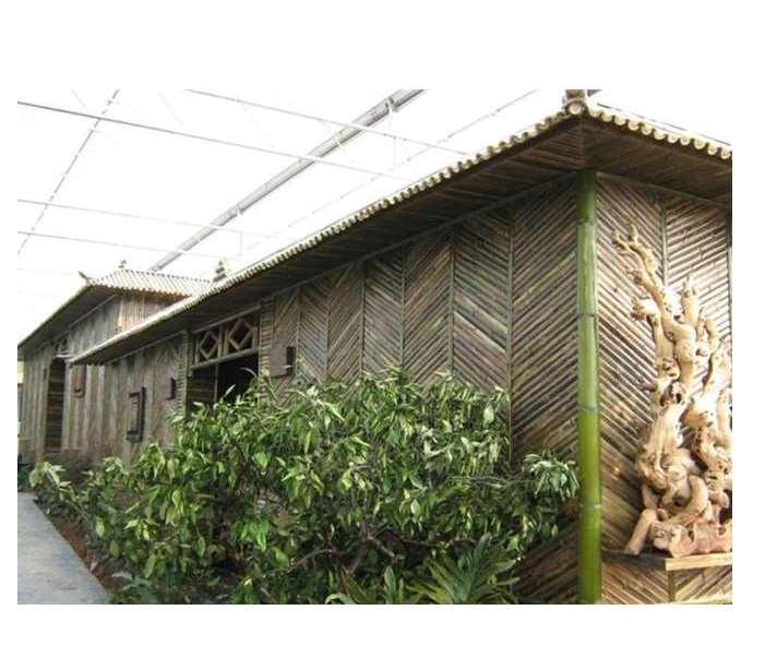 竹房子实用又别致