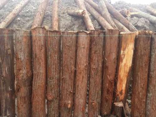 河道护坡木桩供应