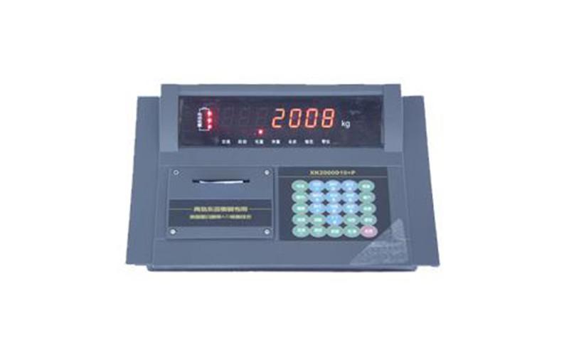 XK2000D10+P仪表