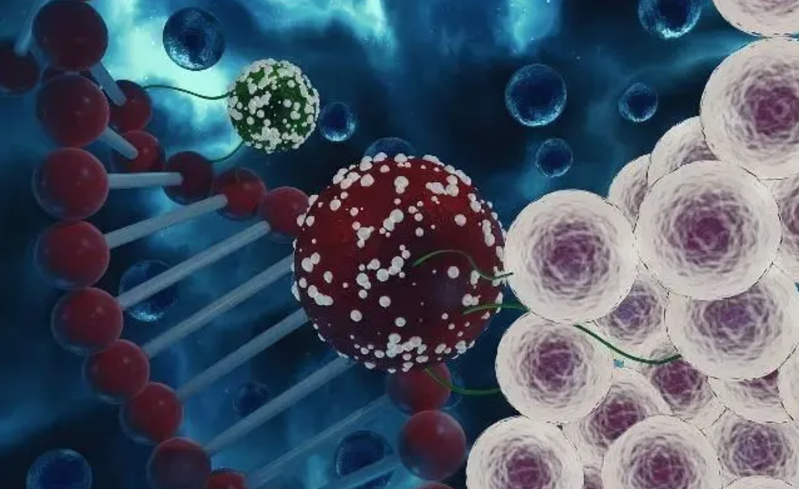 干细胞疗法对肝病肝硬化的临床现状及前景