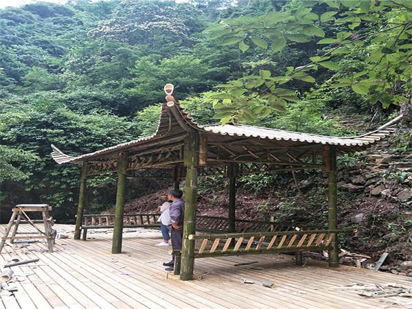 竹长廊图片