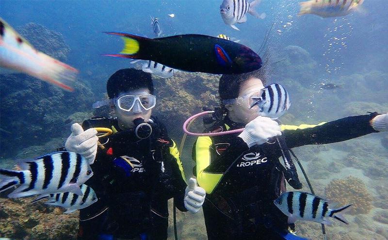 JK潜水基础知识:水下基本动作
