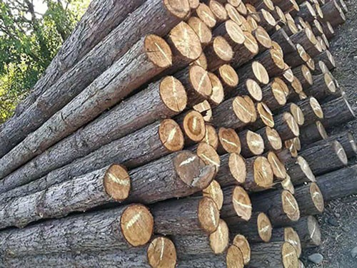 江苏木桩长度