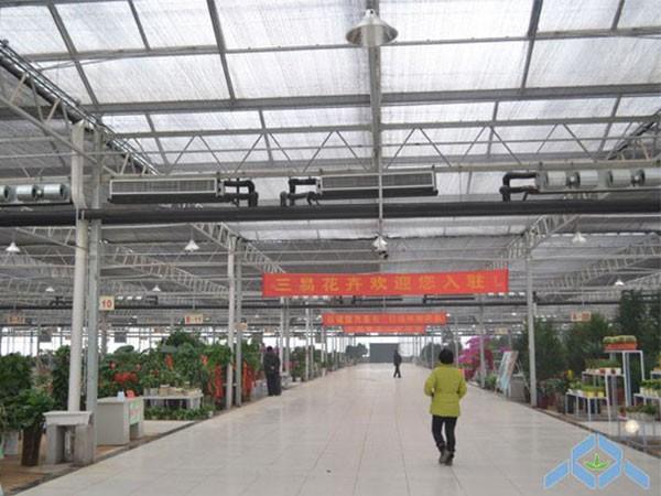 三易花卉基地建设