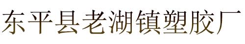 东平县老湖镇塑胶厂
