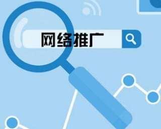 网络推广方法和系统利用分析