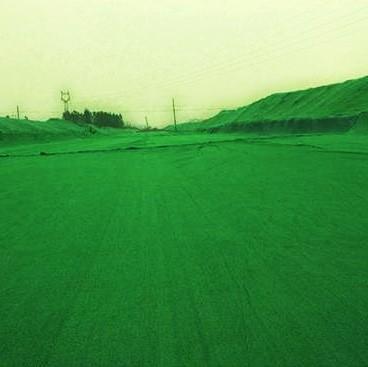 150g护坡绿色土工布案例