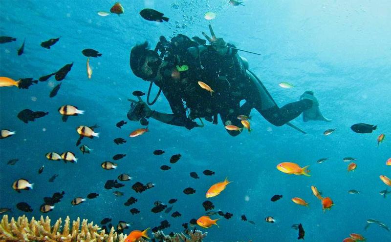 什么时候适合考进阶潜水证照?