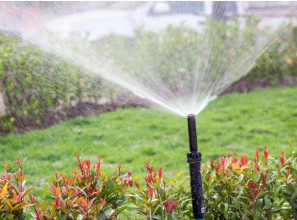 智能灌溉发挥着较大作用