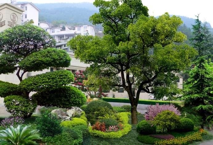 园林绿化养护走市场化可行否