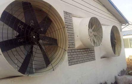 想要殖风机的运行状况较好,我对养殖风机适当的维护必不可少