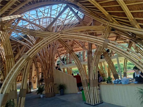 异形竹建筑