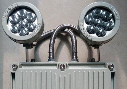 Double head emergency light