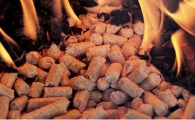 生物质颗粒燃料蒸汽锅炉的制作方法