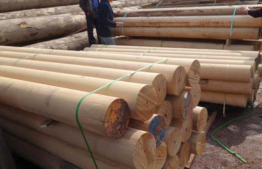 碳化木厂家