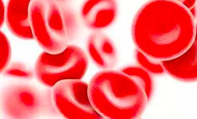 造血干细胞会老化吗?能管多久?