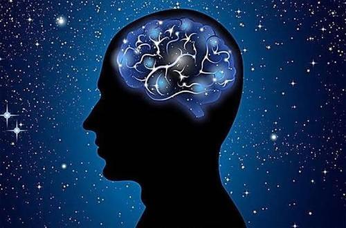 科学家发现大脑免疫系统缺陷会导致脑肿瘤扩散