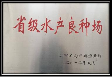 企业荣誉|天鹿岛海参