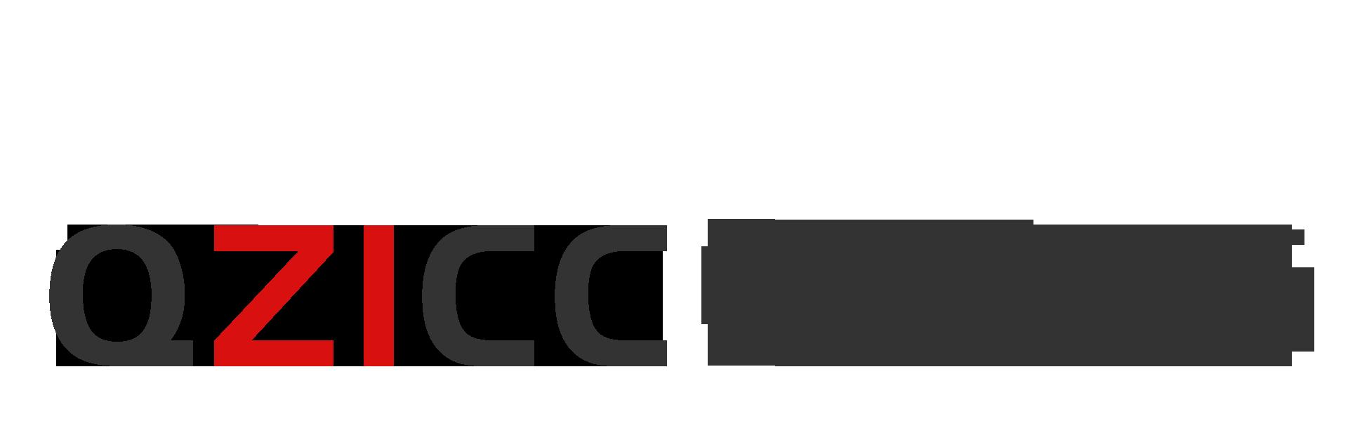 青岛中洲国际经济技术合作有限公司