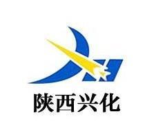陕西兴化集团公司