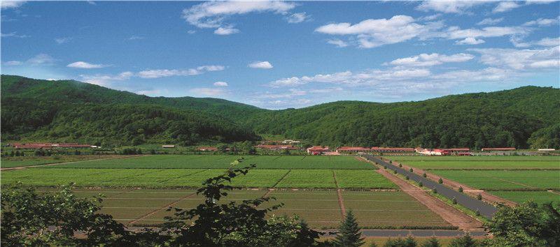 吉林省林草、花卉、果树种苗展销会于9月26日召开
