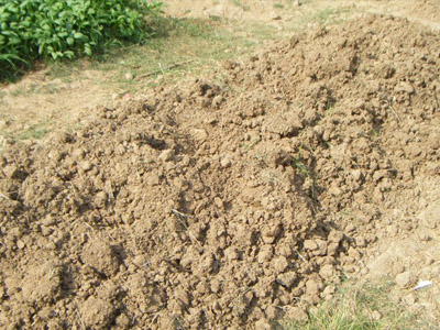 福建具有土壤氡检测资质的单位有哪些