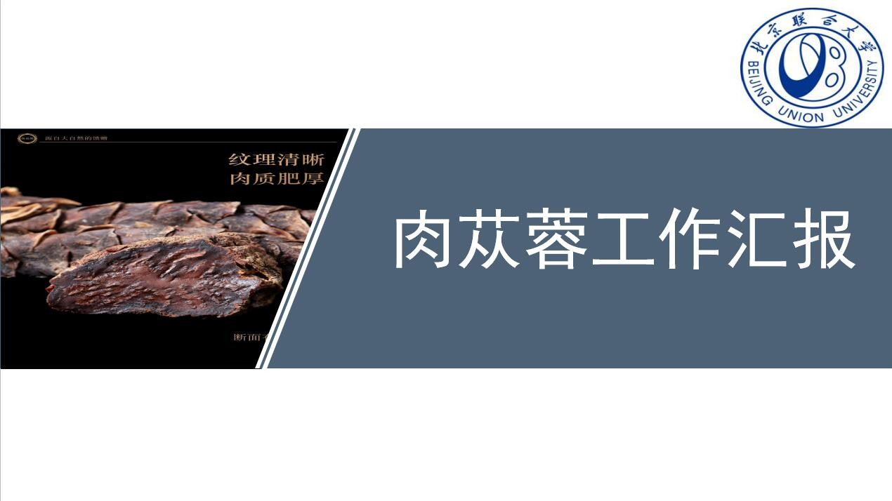 我们公司邀请北京联合大学给我们做了关于肉苁蓉的几项实验