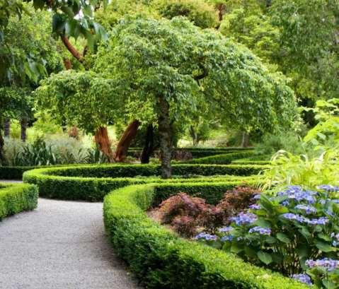 园林绿化工程被更多人关注的原因