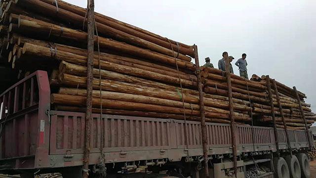 生态木桩加工厂