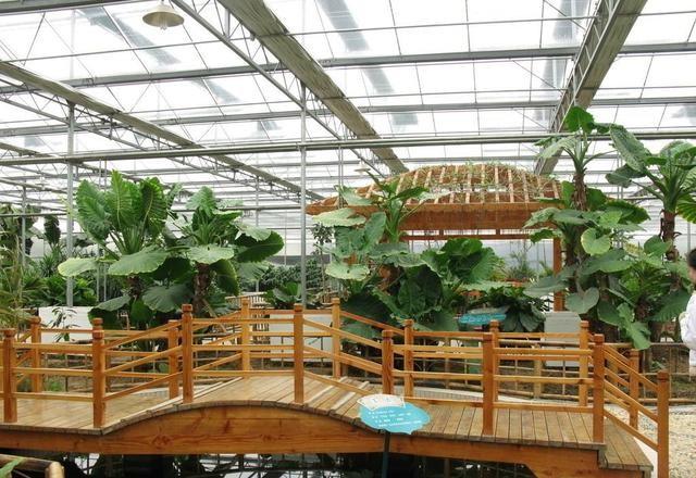 玻璃大棚江南水乡生态餐厅项目