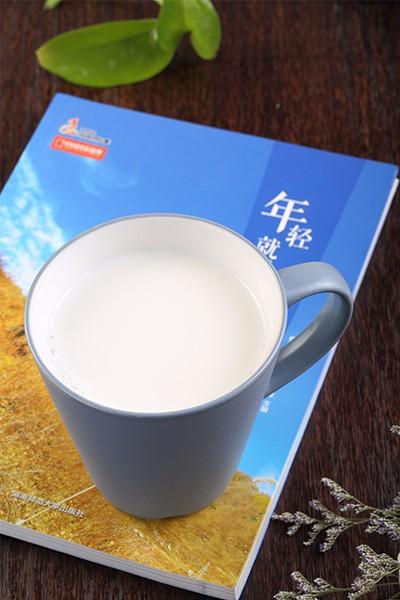 八喜纯牛奶