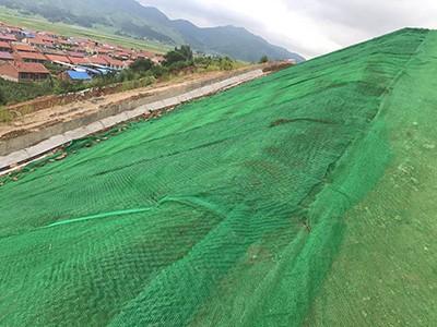 三维植被网护坡项目